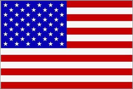 Schwenkfahne USA mit Holzstab 60x90 cm